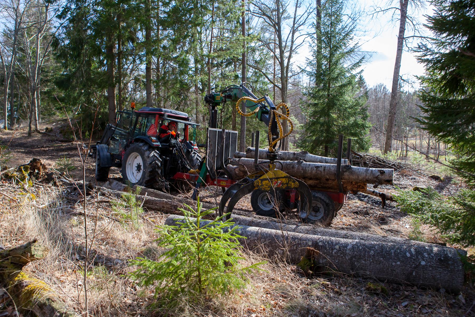Skogsvagn-hemsida